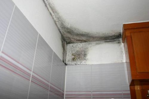 Seminario sistemi contro l umidit di risalita capillare e da condensa indagini termografiche - Contro l umidita in casa ...